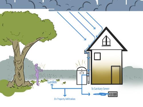 RiverSides Redirecting Stormwater 4